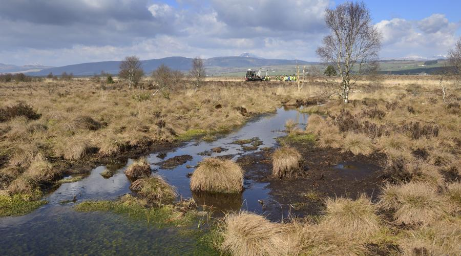Monitoring peat bogs from space is crucial  for Scotland